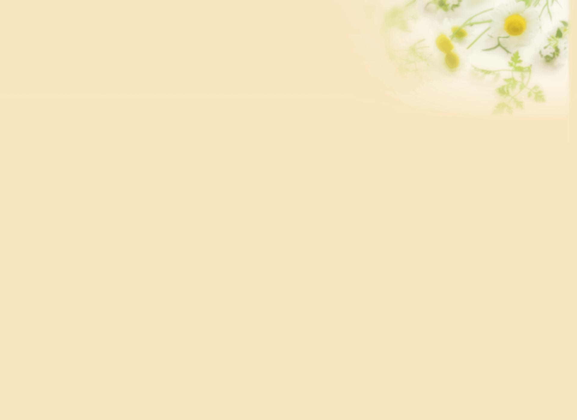 フラームジャパン代表飯嶋真美とブリストル・マイヤーズスクイブ株式会社の執行役員である辻和美さんのインタビュー風景1