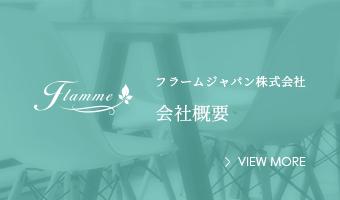 フラームジャパン株式会社会社概要への外部リンク